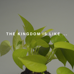 The Kingdom is Like ...